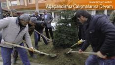 Ağaçlandırma Çalışmalarına Devam