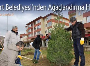 Bayburt Belediyesi'nden Ağaçlandırma Hamlesi