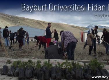Bayburt Üniversitesi Fidan Dikiyor