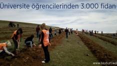 Üniversite öğrencilerinden 3.000 fidan