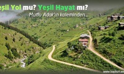 Yeşil Yol mu? Yeşil Hayat mı?