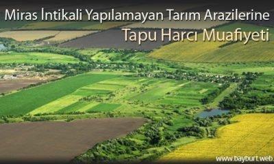 Miras İntikali Yapılamayan Arazilere Tapu Harcı Muafiyeti