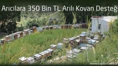 Arıcılara 350 Bin TL Arılı Kovan Desteği