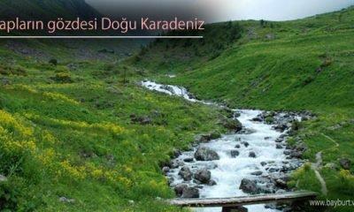 Arap Turistlerin Gözde Mekanı Doğu Karadeniz