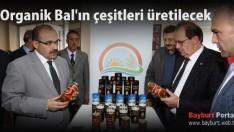 Organik Bal'ın çeşitleri üretilecek