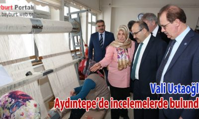 Vali Ustaoğlu, Aydıntepe'de ziyaretlerde bulundu