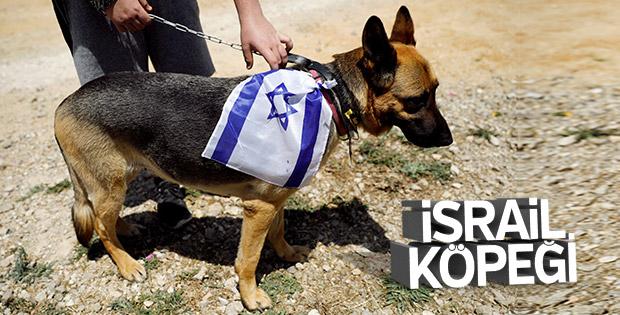 UNESCO İsrail'i işgalci güç olarak kabul etti  - unesco israili isgalci guc olarak kabul etti - UNESCO İsrail'i işgalci güç olarak kabul etti