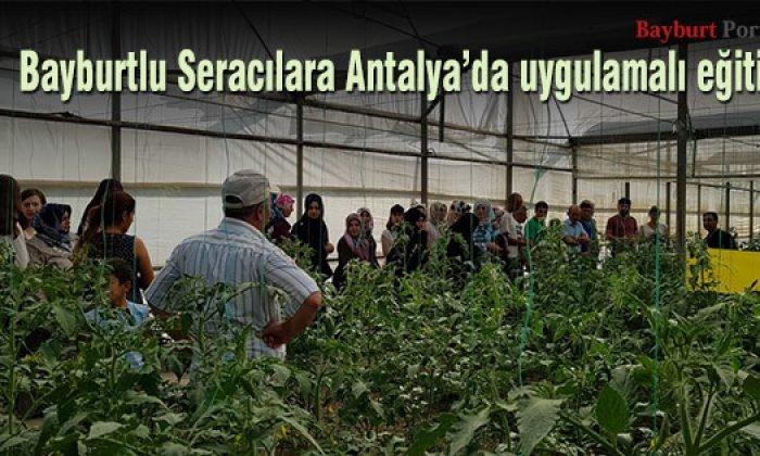 Bayburtlu Seracılara Antalya'da uygulamalı eğitim
