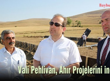 Vali Pehlivan, Ahır Projelerini inceledi