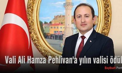 Vali Ali Hamza Pehlivan'a yılın valisi ödülü
