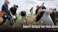 Baberti Külliyesi'nde fidan dikimi