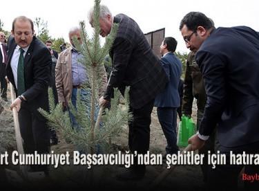 Bayburt Cumhuriyet Başsavcılığın'dan şehitler için hatıra ormanı