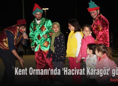 Kent Ormanı'nda 'Hacivat Karagöz' gösterisi