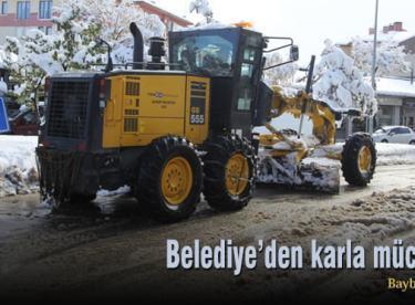 Belediye'den karla mücadele