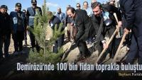 Demirözü'nde 100 bin fidan toprakla buluştu